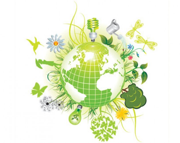 Aprende a comprar productos ecologicos