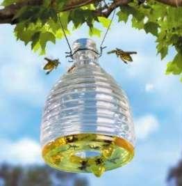 deshacerse de las abejas