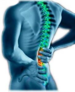 Artritis vertebral y gota